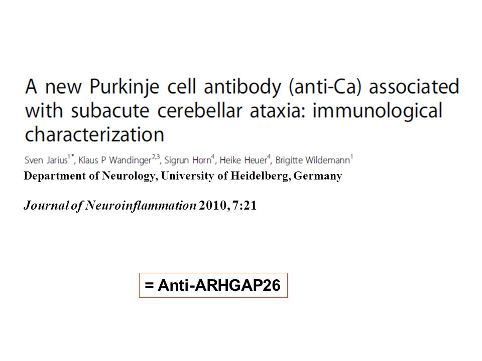 = Anti-ARHGAP26 Journal of Neuroinflammation 2010, 7:21