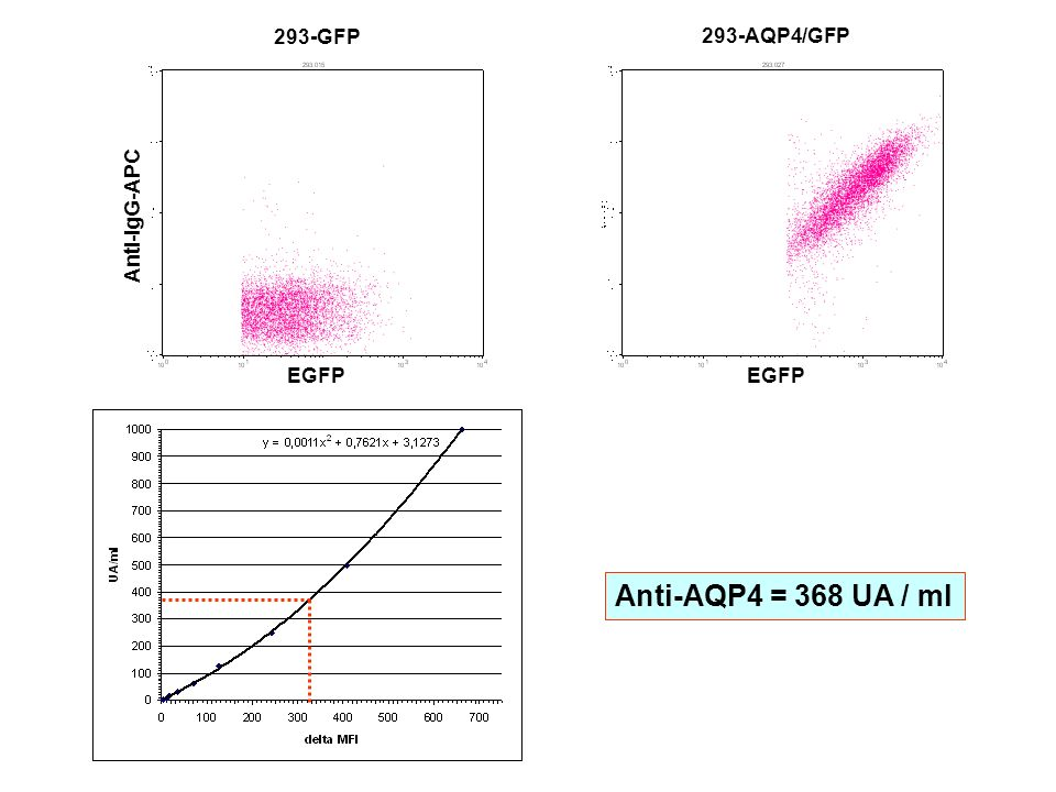 293-GFP EGFP Anti-IgG-APC 293-AQP4/GFP EGFP Anti-AQP4 = 368 UA / ml