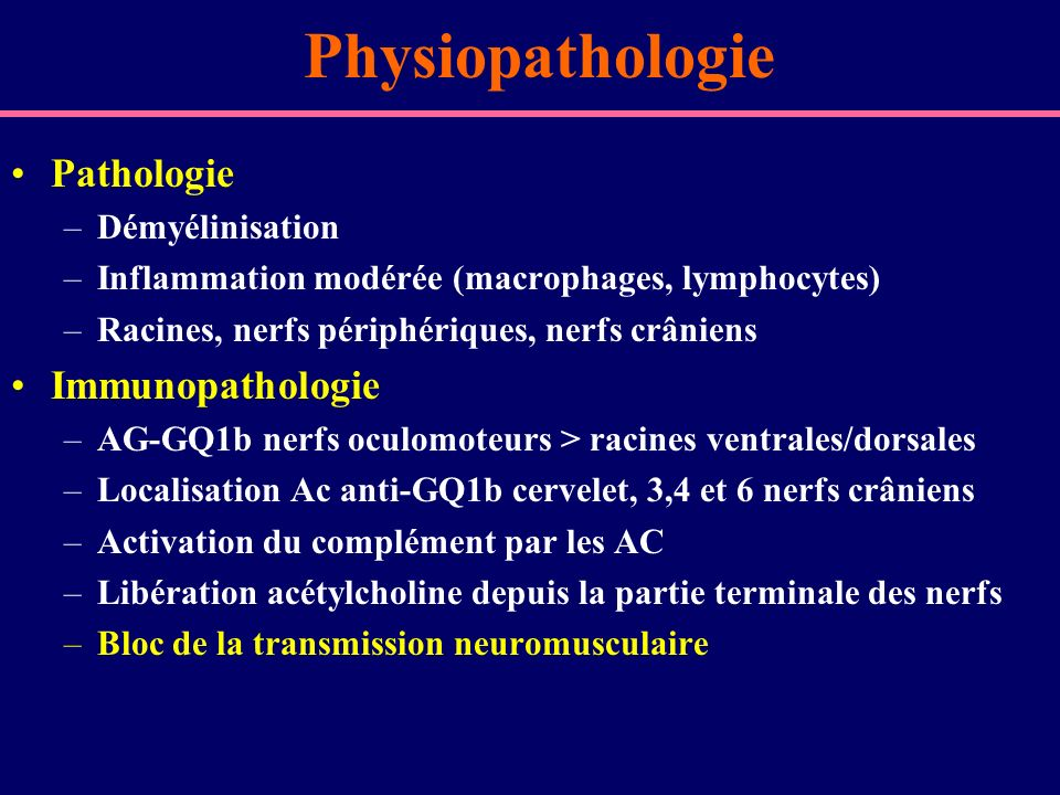 Physiopathologie Pathologie Immunopathologie Démyélinisation