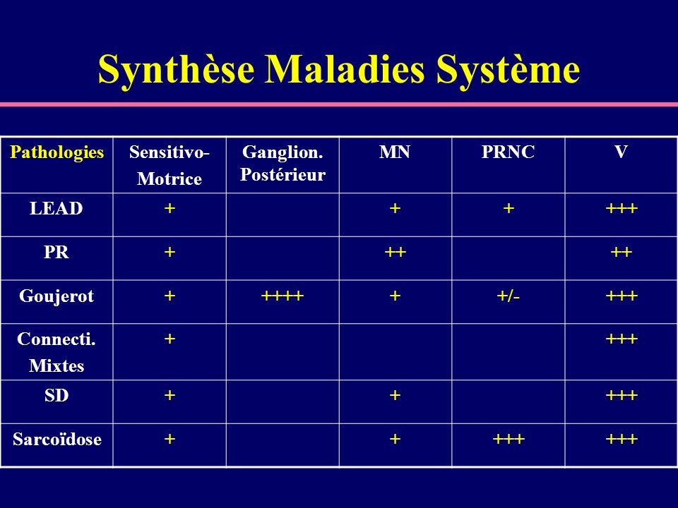 Synthèse Maladies Système