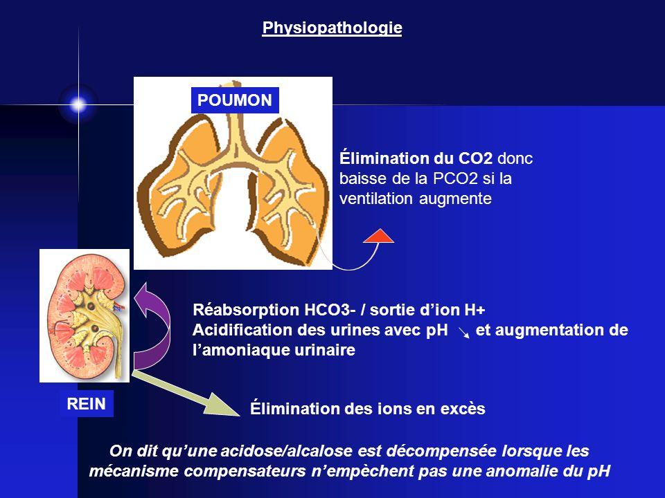 Physiopathologie POUMON. Élimination du CO2 donc baisse de la PCO2 si la ventilation augmente. Réabsorption HCO3- / sortie d'ion H+
