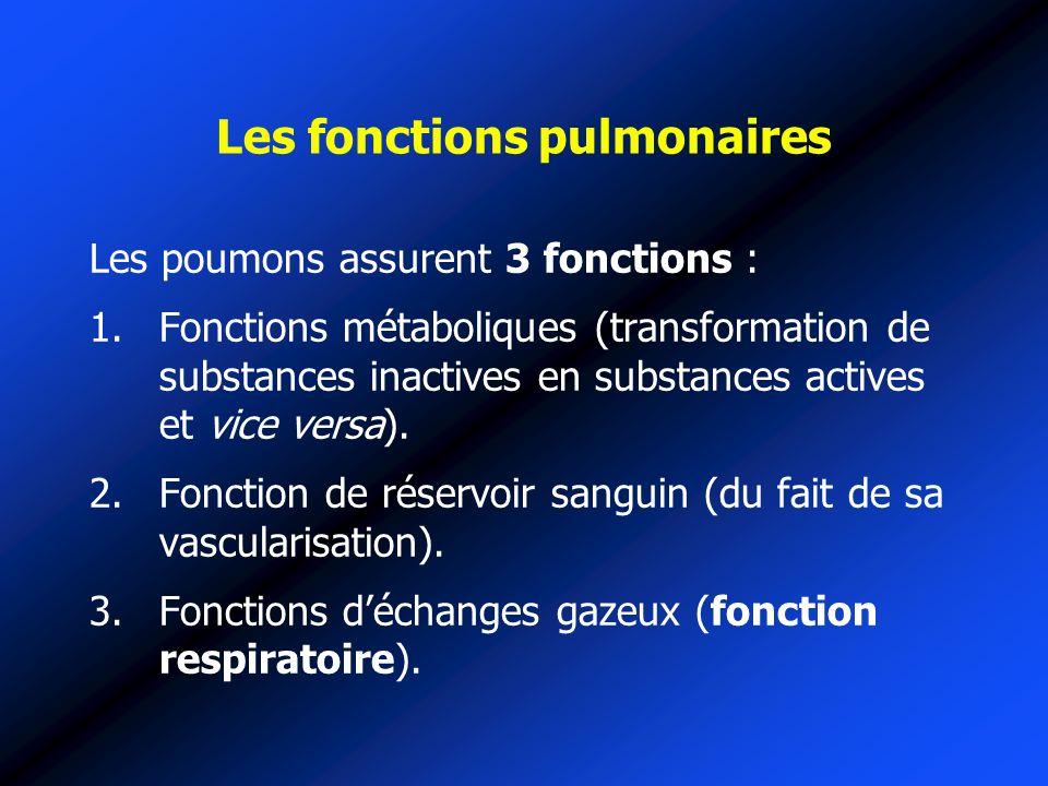 Les fonctions pulmonaires