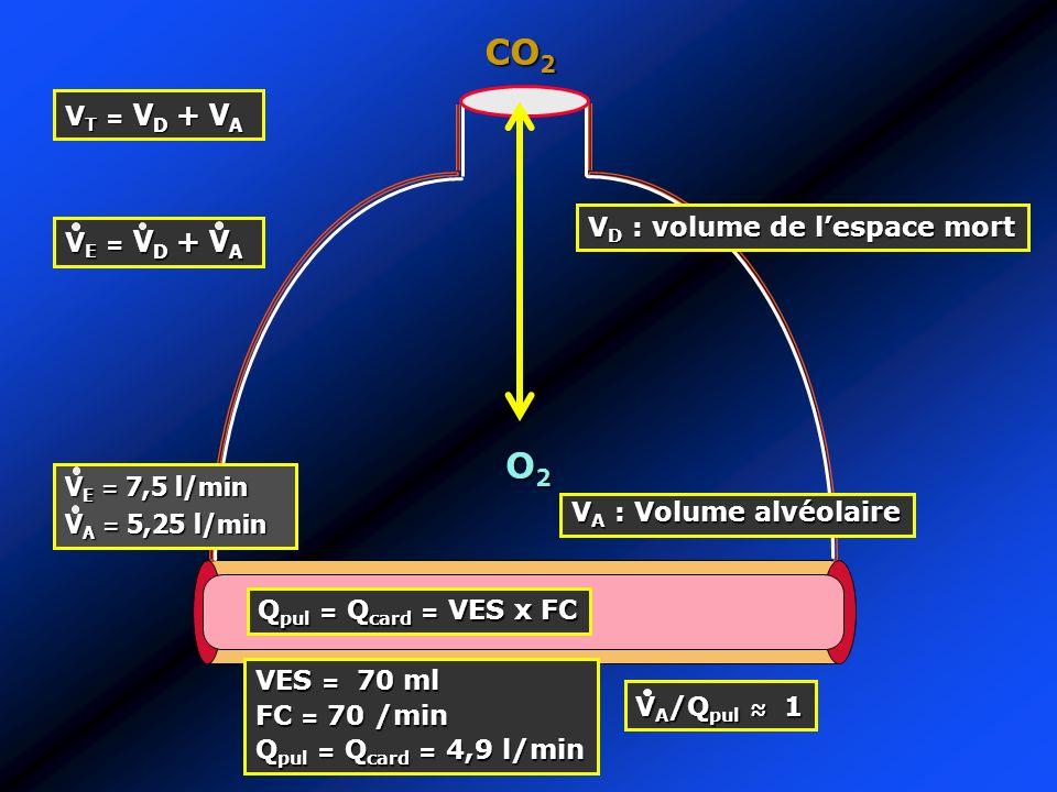 CO2 O2 VT = VD + VA VD : volume de l'espace mort VE = VD + VA