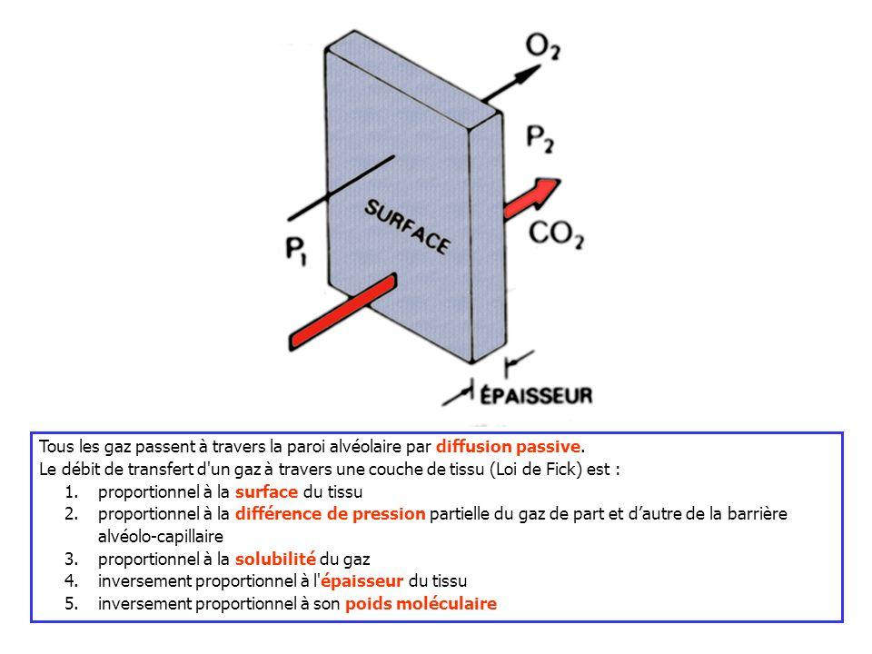 Tous les gaz passent à travers la paroi alvéolaire par diffusion passive.