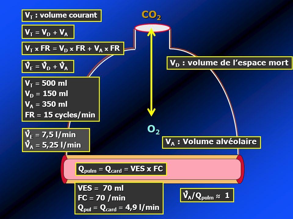 CO2 O2 VT : volume courant VT = VD + VA VT x FR = VD x FR + VA x FR