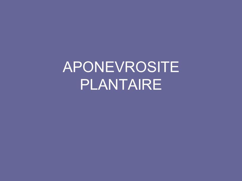 APONEVROSITE PLANTAIRE