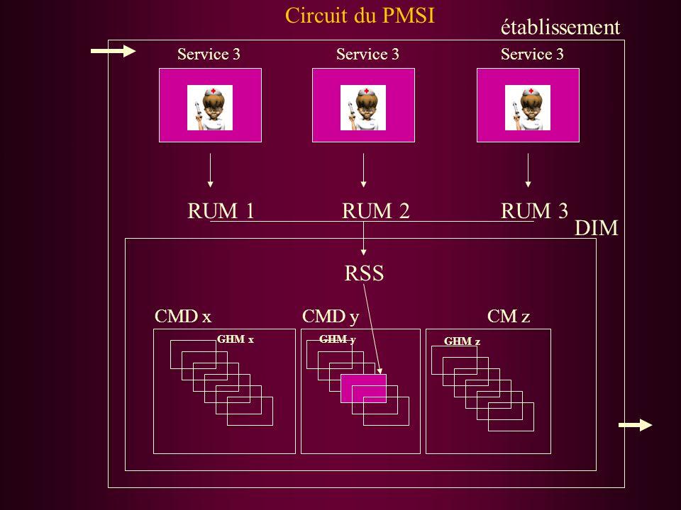 Circuit du PMSI établissement RUM 1 RUM 2 RUM 3 DIM RSS CMD x CMD y