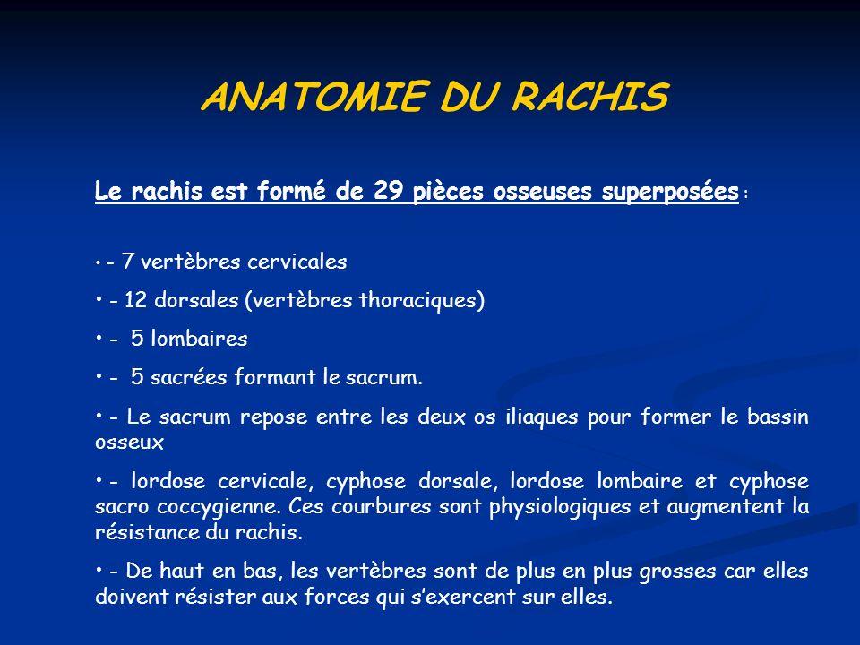 ANATOMIE DU RACHIS Le rachis est formé de 29 pièces osseuses superposées : - 7 vertèbres cervicales.