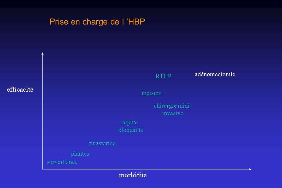 Prise en charge de l 'HBP
