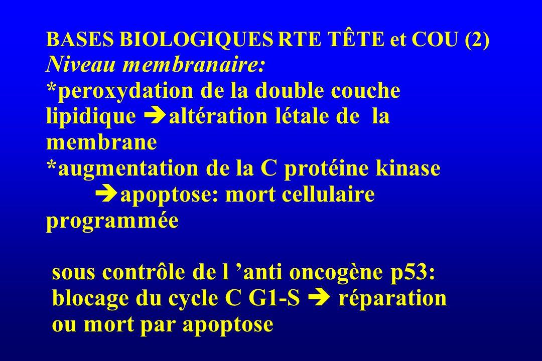 BASES BIOLOGIQUES RTE TÊTE et COU (2) Niveau membranaire: