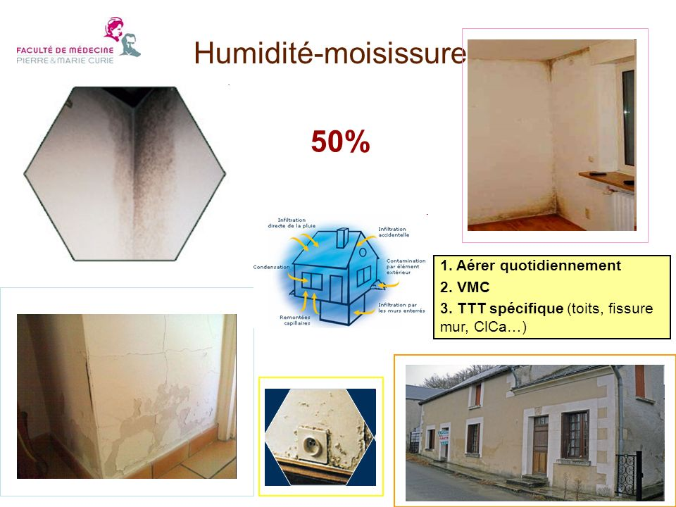Humidité-moisissures