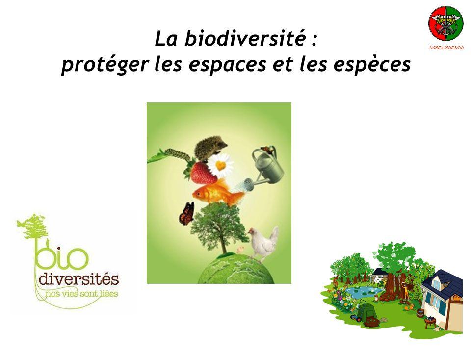 La biodiversité : protéger les espaces et les espèces