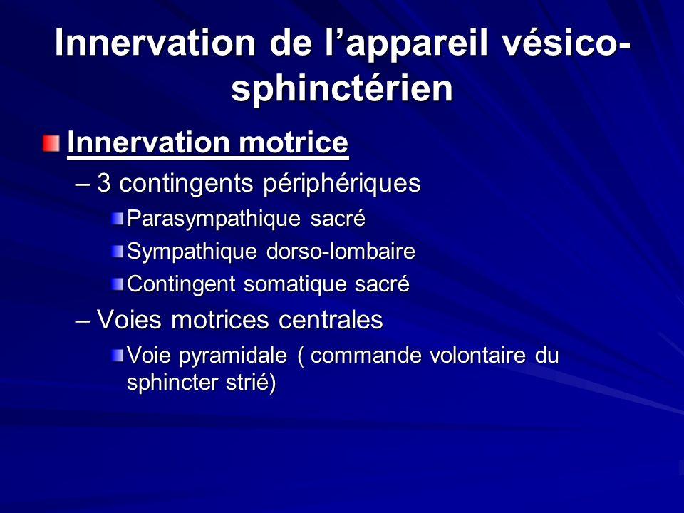 Innervation de l'appareil vésico-sphinctérien