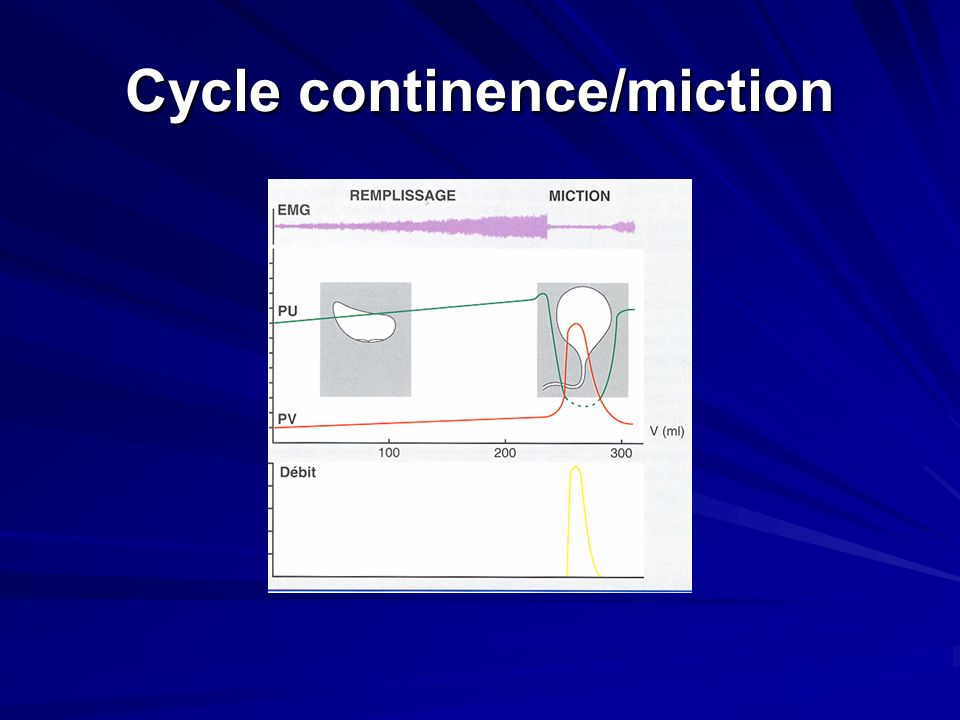 Cycle continence/miction