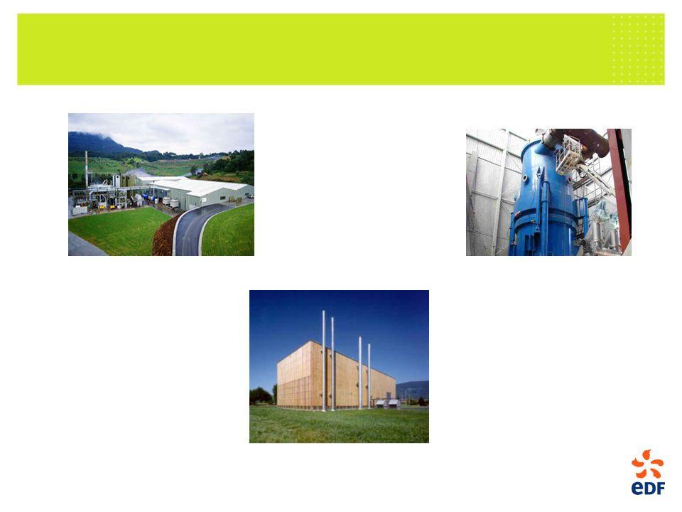 La ressource biomasse paille bois forêt. produit connexe. bois de rebut. Chaleur. déjà très développé en France.