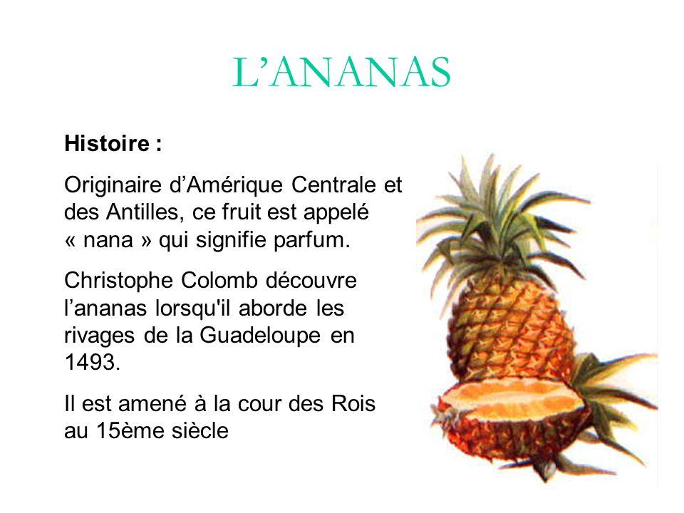 L'ANANAS Histoire : Originaire d'Amérique Centrale et des Antilles, ce fruit est appelé « nana » qui signifie parfum.
