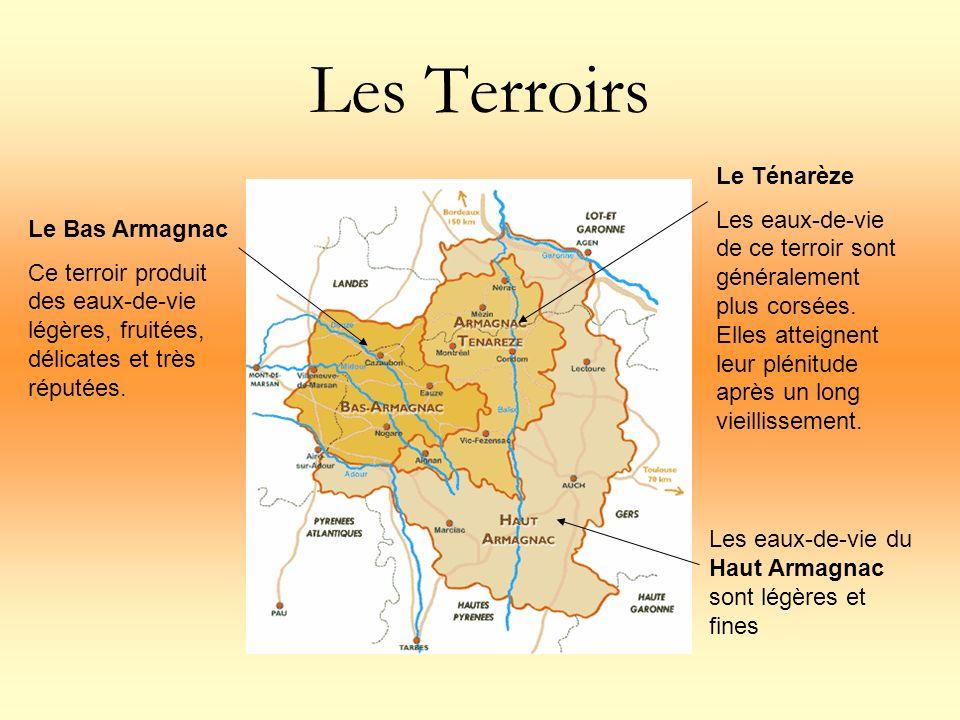 Les Terroirs Le Ténarèze