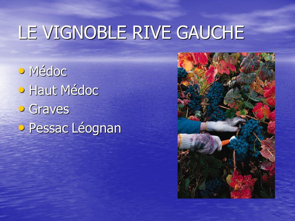 LE VIGNOBLE RIVE GAUCHE