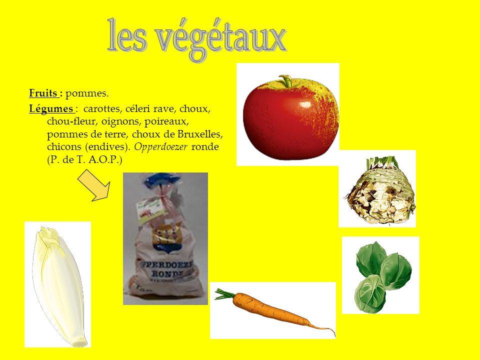 les végétaux Fruits : pommes.