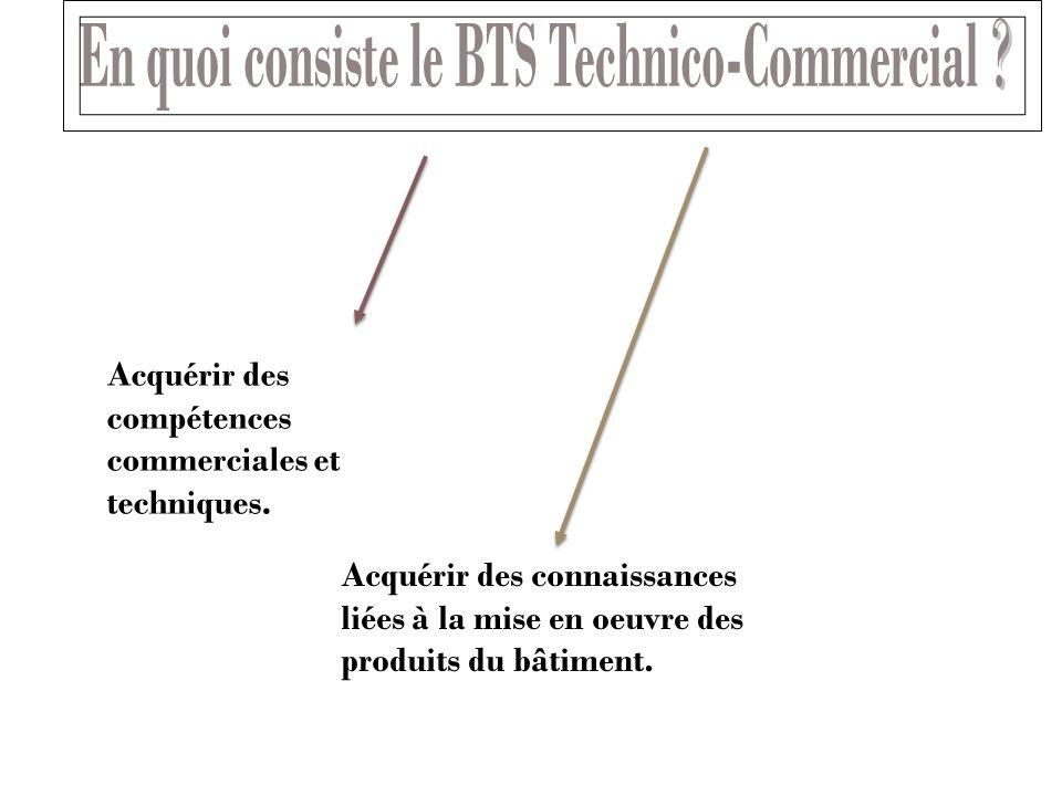 En quoi consiste le BTS Technico-Commercial