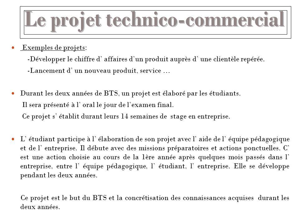 Le projet technico-commercial