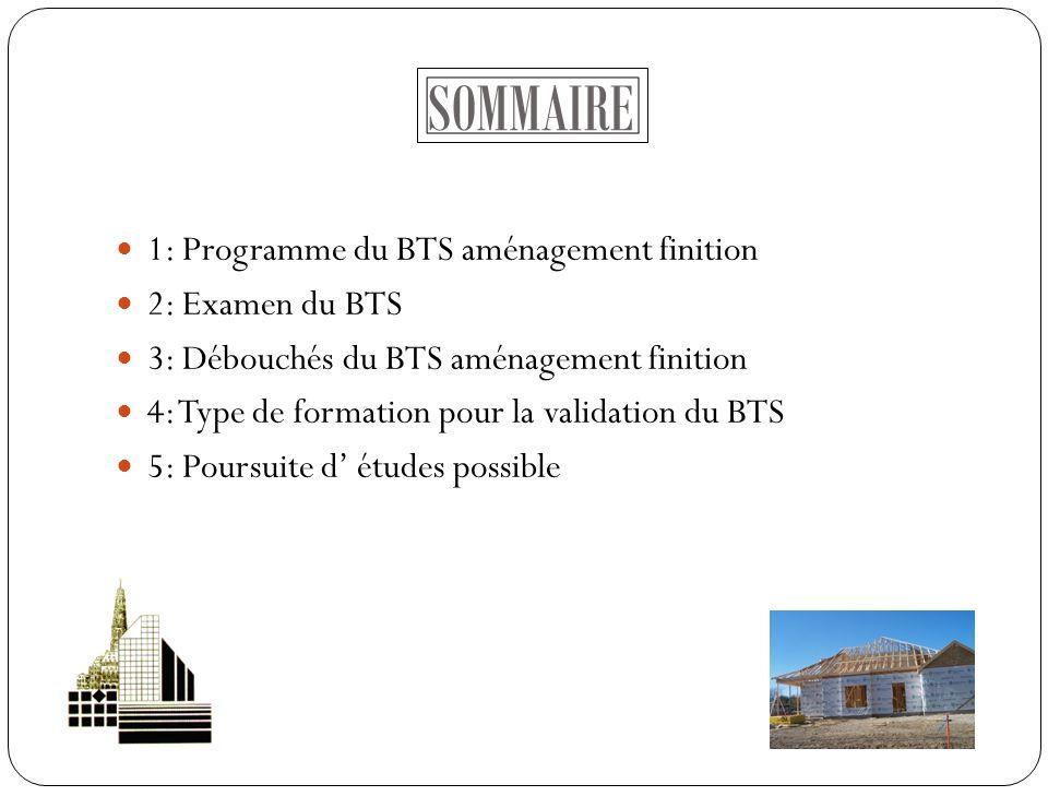 SOMMAIRE 1: Programme du BTS aménagement finition 2: Examen du BTS