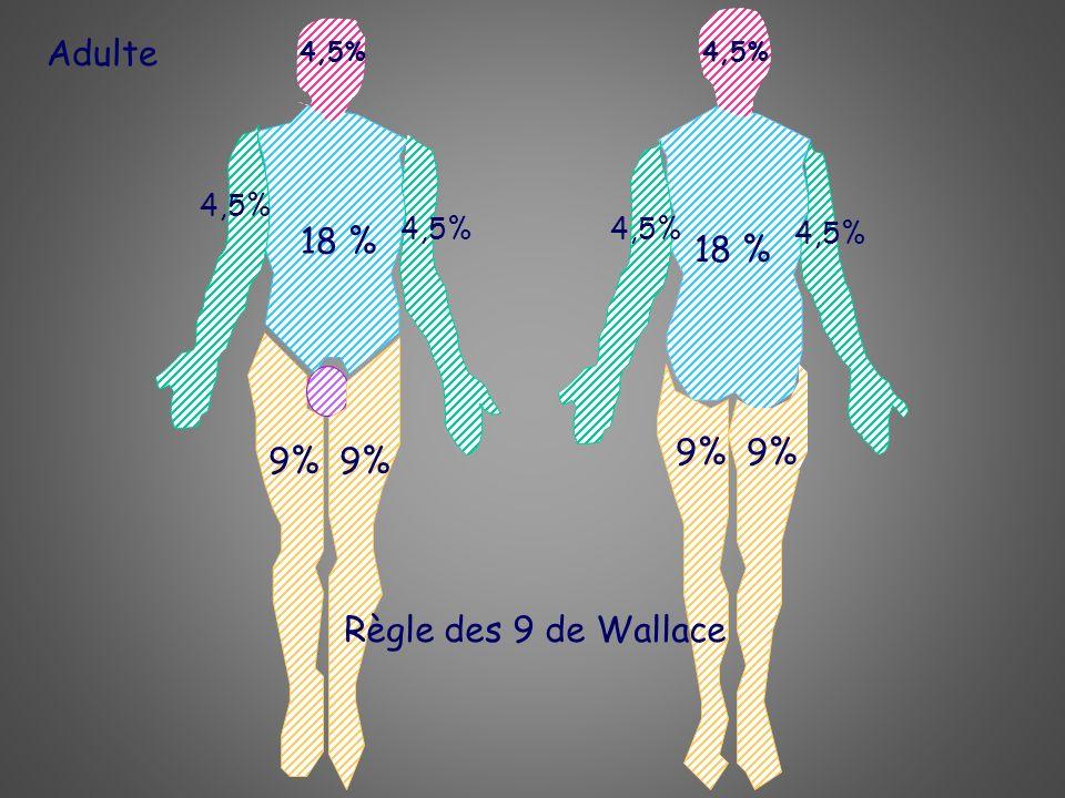 Adulte 18 % 18 % 9% 9% 9% 9% Règle des 9 de Wallace 4,5% 4,5% 4,5%