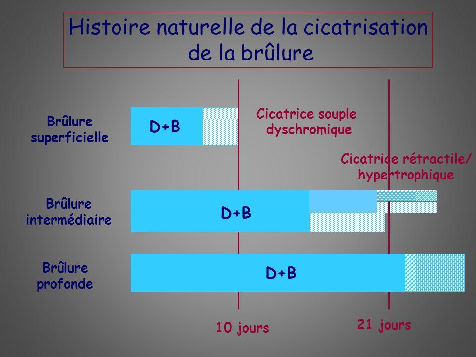 Brûlure superficielle Cicatrice rétractile/ Brûlure intermédiaire