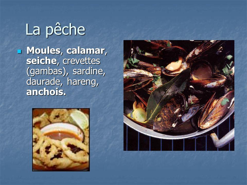 La pêche Moules, calamar, seiche, crevettes (gambas), sardine, daurade, hareng, anchois.