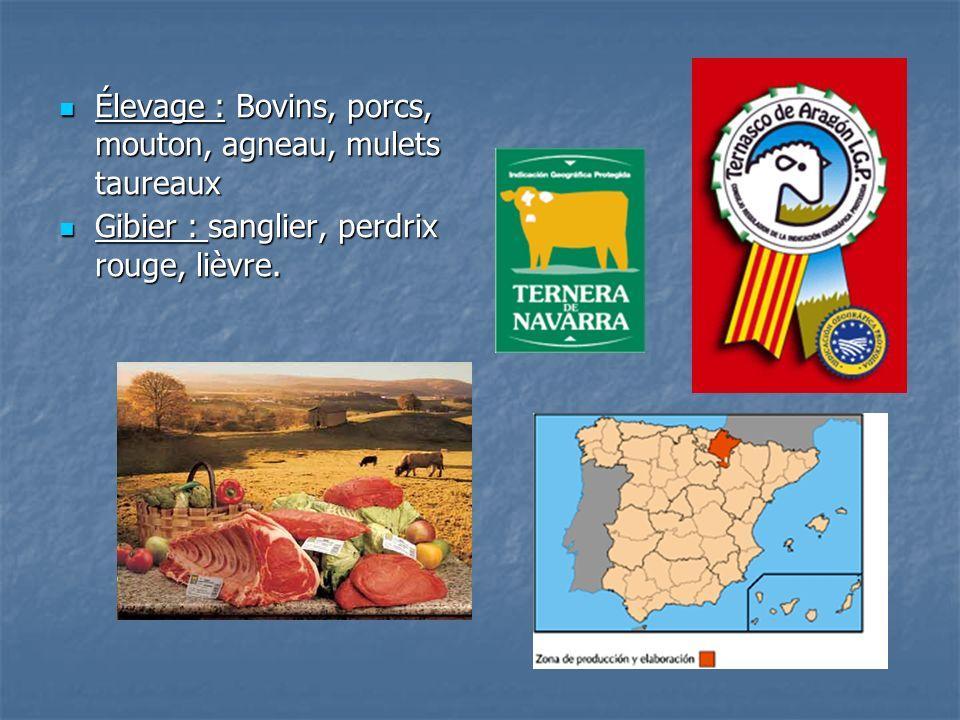 Élevage : Bovins, porcs, mouton, agneau, mulets taureaux