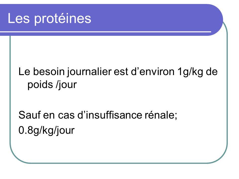 Les protéines Le besoin journalier est d'environ 1g/kg de poids /jour