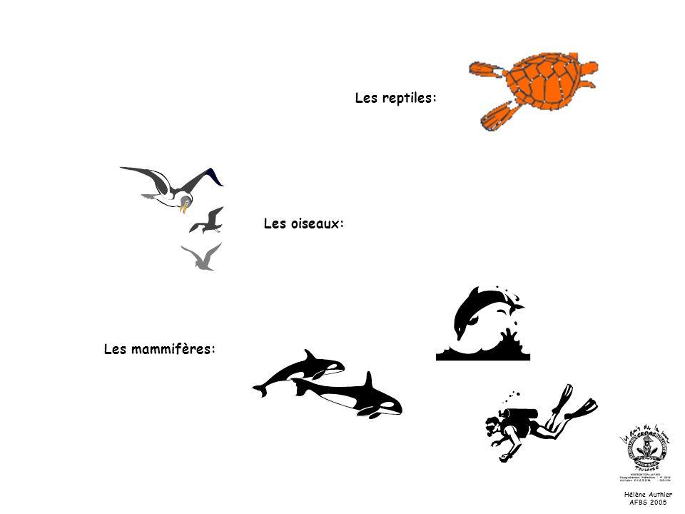 Les reptiles: Les oiseaux: Les mammifères: