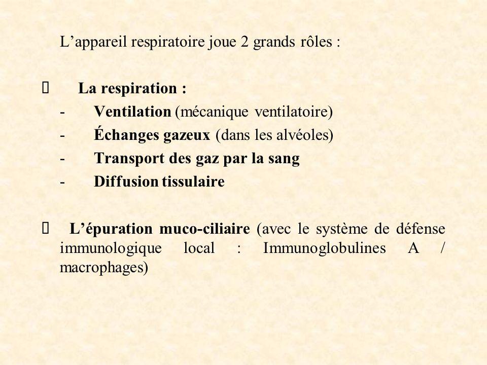 L'appareil respiratoire joue 2 grands rôles :