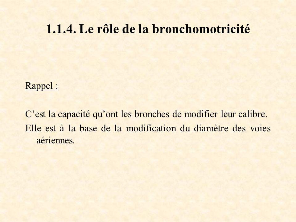 1.1.4. Le rôle de la bronchomotricité