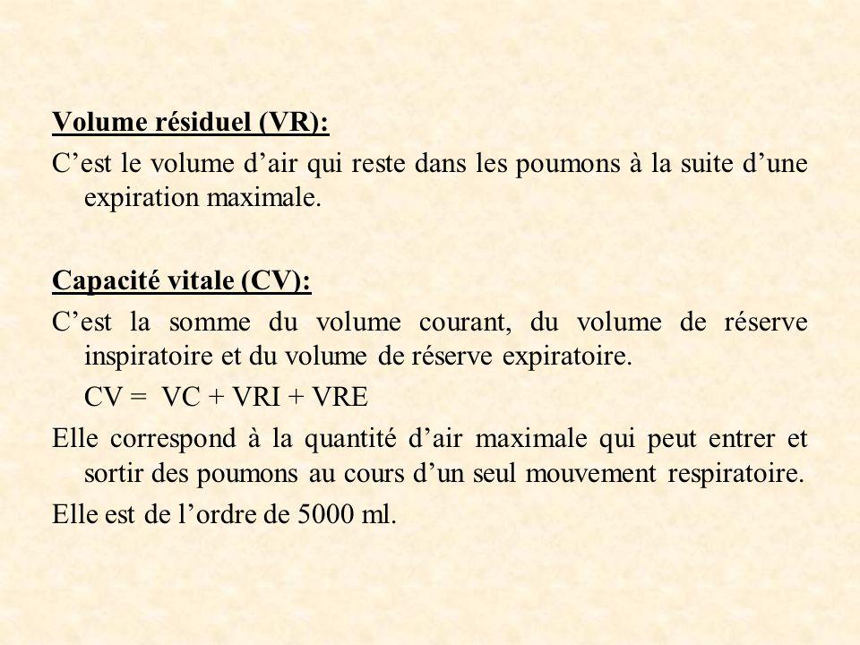 Volume résiduel (VR): C'est le volume d'air qui reste dans les poumons à la suite d'une expiration maximale.