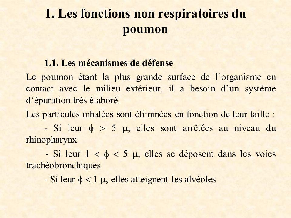 1. Les fonctions non respiratoires du poumon