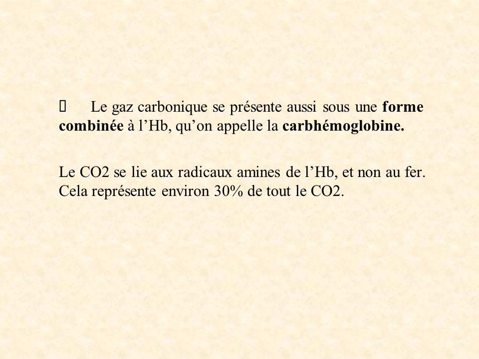 Ø Le gaz carbonique se présente aussi sous une forme combinée à l'Hb, qu'on appelle la carbhémoglobine.