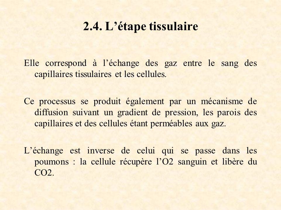 2.4. L'étape tissulaire Elle correspond à l'échange des gaz entre le sang des capillaires tissulaires et les cellules.