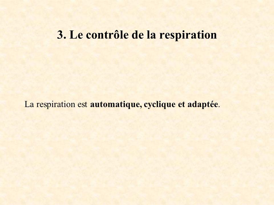 3. Le contrôle de la respiration