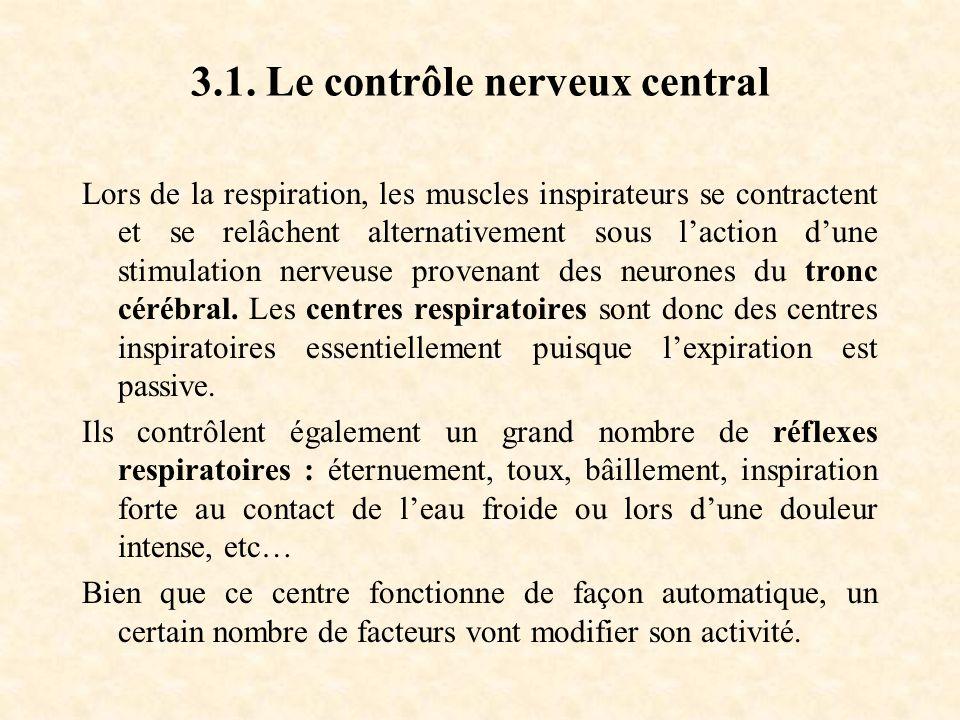 3.1. Le contrôle nerveux central