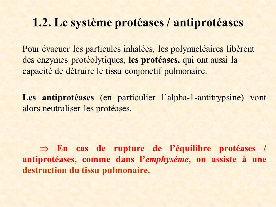 1.2. Le système protéases / antiprotéases