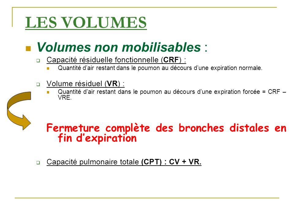 LES VOLUMES Volumes non mobilisables :
