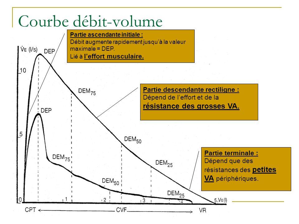 Courbe débit-volume Partie descendante rectiligne :