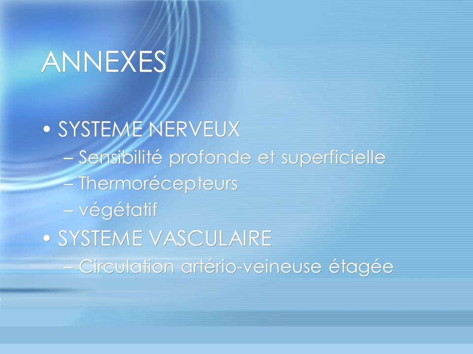 ANNEXES SYSTEME NERVEUX SYSTEME VASCULAIRE