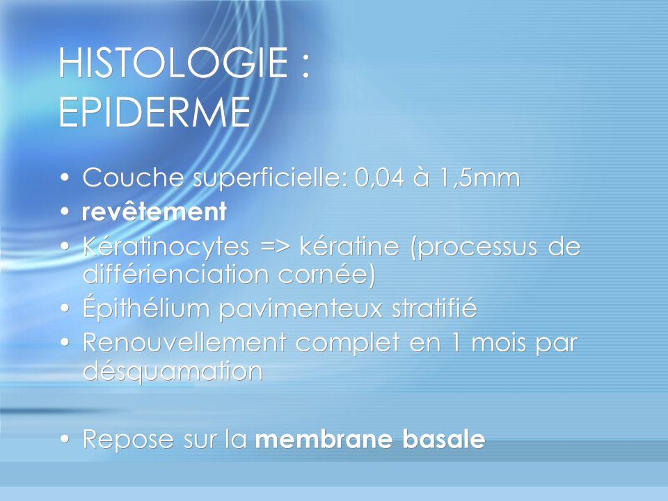 HISTOLOGIE : EPIDERME Couche superficielle: 0,04 à 1,5mm revêtement