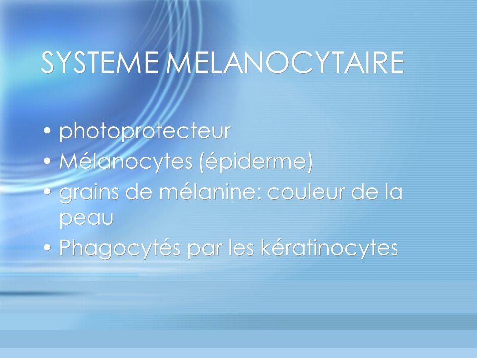SYSTEME MELANOCYTAIRE