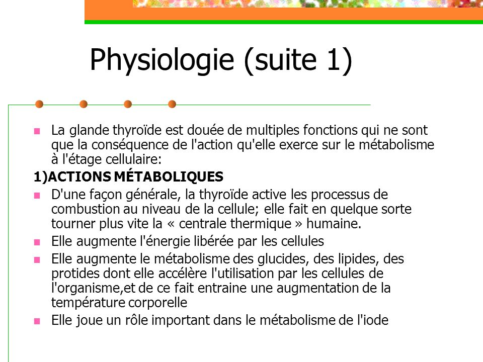 Physiologie (suite 1)