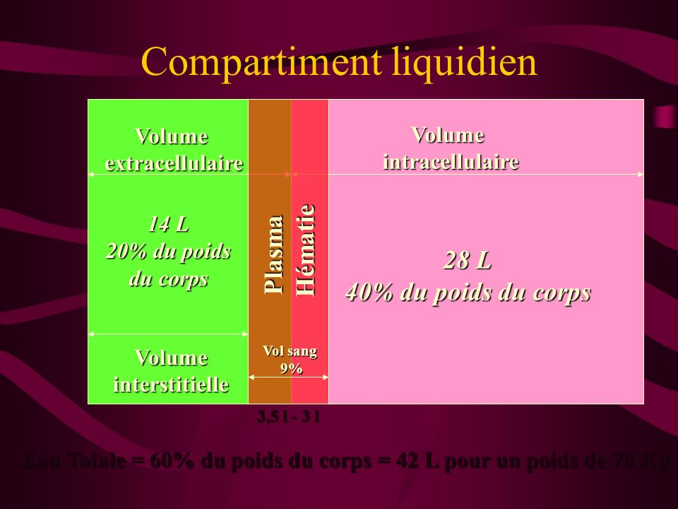 Compartiment liquidien