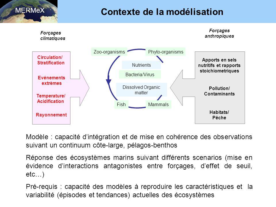 Contexte de la modélisation