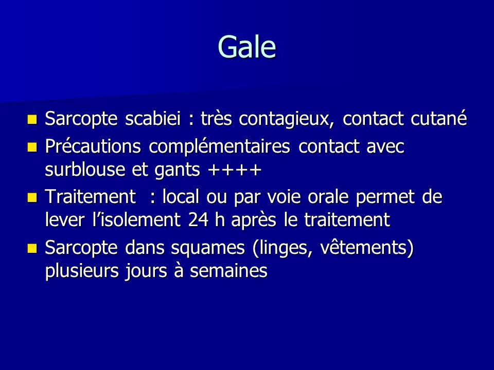 Gale Sarcopte scabiei : très contagieux, contact cutané